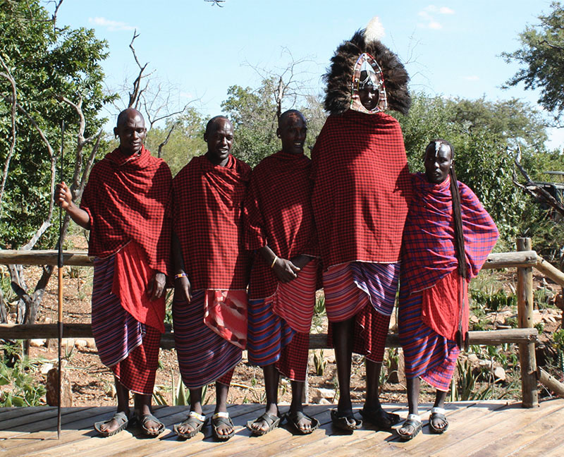 safari en tanzania