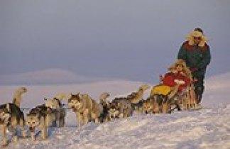Finlandia. Husky Aventura en Laponia