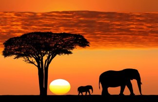La Gran Aventura en Tanzania
