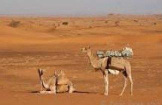 Sudán. Los Faraones Negros. Ruta arqueológica y poblados nubios.