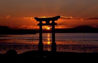 Japón fascinante en Semana Santa para Singles