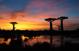 Madagascar.Reservas naturales, poblados tradicionales y canal de Mozambique