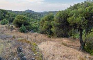 Senderismo y tapas en la Sierra de Mijas. Escapada singles