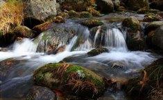 Senderismo: Navacerrada y Fuenfria